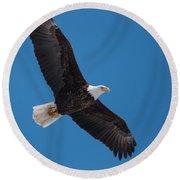 Bald Eagle In Flight 5 Round Beach Towel