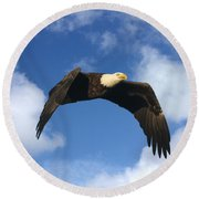 Bald Eagle In Flight Round Beach Towel