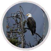 Bald Eagle On Watch Round Beach Towel