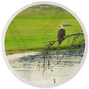 Bald Eagle Overlooking Yellowstone River Round Beach Towel