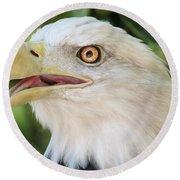 American Bald Eagle Portrait - Bright Eye Round Beach Towel