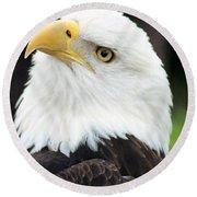 Bald Eagle - Power And Poise 01 Round Beach Towel