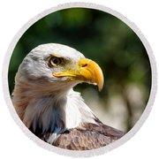 Bald Eagle Profile Round Beach Towel