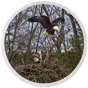 Bald Eagles At Nest Round Beach Towel