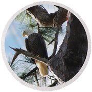Bald Eagles Eye View Round Beach Towel
