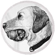 Ball Collector Round Beach Towel by Susan Herber