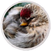Ball Of Feathers Round Beach Towel by Christina Rollo