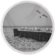 Baltic Sea-gulls Round Beach Towel