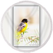 Baltimore Oriole 4348-19 Round Beach Towel