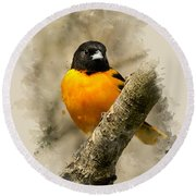Baltimore Oriole Watercolor Art Round Beach Towel