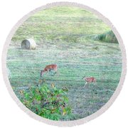 Bambi And The Twins  Round Beach Towel