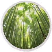 Bamboo Forest 5 Round Beach Towel
