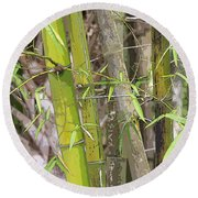 Bamboo I Poster Look Round Beach Towel