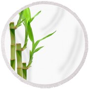 Bamboo Stems In Black Vase Round Beach Towel