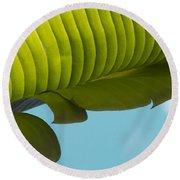 Banana Leaf And Maui Sky Round Beach Towel
