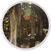 Banyan Tree Park Round Beach Towel