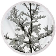 Bare Branches With Snow Round Beach Towel