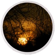 Bare Tree Branches With Winter Sunrise Round Beach Towel