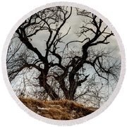 Bare Tree On The Hill Round Beach Towel