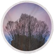 Bare Trees And Autumn Sky Round Beach Towel
