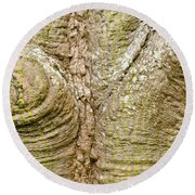 Bark Of Silk Floss Tree Background Texture Pattern Round Beach Towel