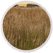 Barley Field Round Beach Towel