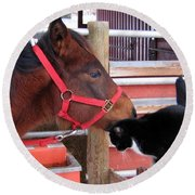 Barn Buddies Round Beach Towel