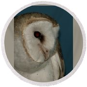 Barn Owl 2 Round Beach Towel