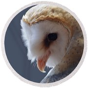 Barn Owl Dry Brushed Round Beach Towel