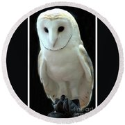 Barn Owl. Round Beach Towel