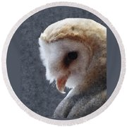 Barn Owl Painterly Round Beach Towel