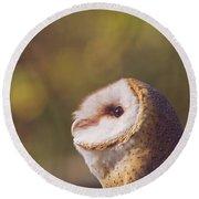 Barn Owl Photo Millie Round Beach Towel