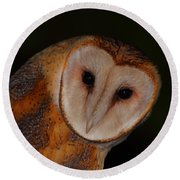 Barn Owl Portrait II Round Beach Towel