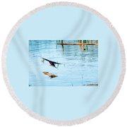 Barn Swallow In Flight Round Beach Towel