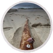 Barnacle Tales Round Beach Towel