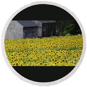 Barns And Sunflowers Round Beach Towel