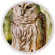 Barred Owl On Moss Round Beach Towel