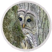 Barred Owl Peek A Boo Round Beach Towel
