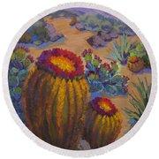 Barrel Cactus In Warm Light Round Beach Towel