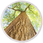 Bartrams Tree Round Beach Towel