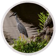 Bayou Bird Round Beach Towel