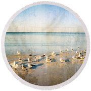 Beach Combers - Seagull Art By Sharon Cummings Round Beach Towel by Sharon Cummings