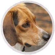 Beagle Loyalty Round Beach Towel