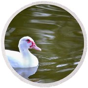 Beak And Feather Reflections Of The Muscovy  Round Beach Towel
