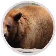 Bear In The Bath Round Beach Towel