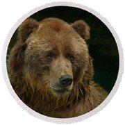 Bear In The Pool Round Beach Towel