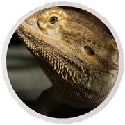 Bearded Dragon Profile Round Beach Towel