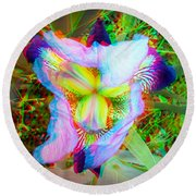 Bearded Iris Cultivar - Use Red-cyan 3d Glasses Round Beach Towel
