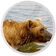 Bear's Eye View Of Swimming Grizzly In Moraine River In Katmai Round Beach Towel