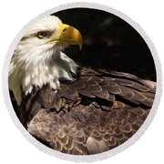 Beautiful Bald Eagle Round Beach Towel